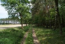 Das Ausreitgelände rund um den Buchenhof _25