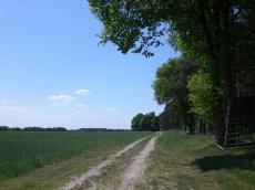 Das Ausreitgelände rund um den Buchenhof _7