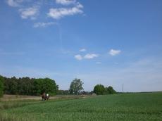 Das Ausreitgelände rund um den Buchenhof _9